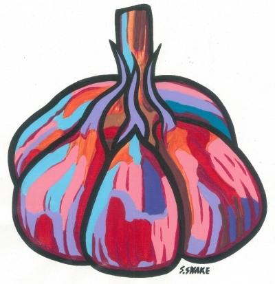Garlic bulb web 2