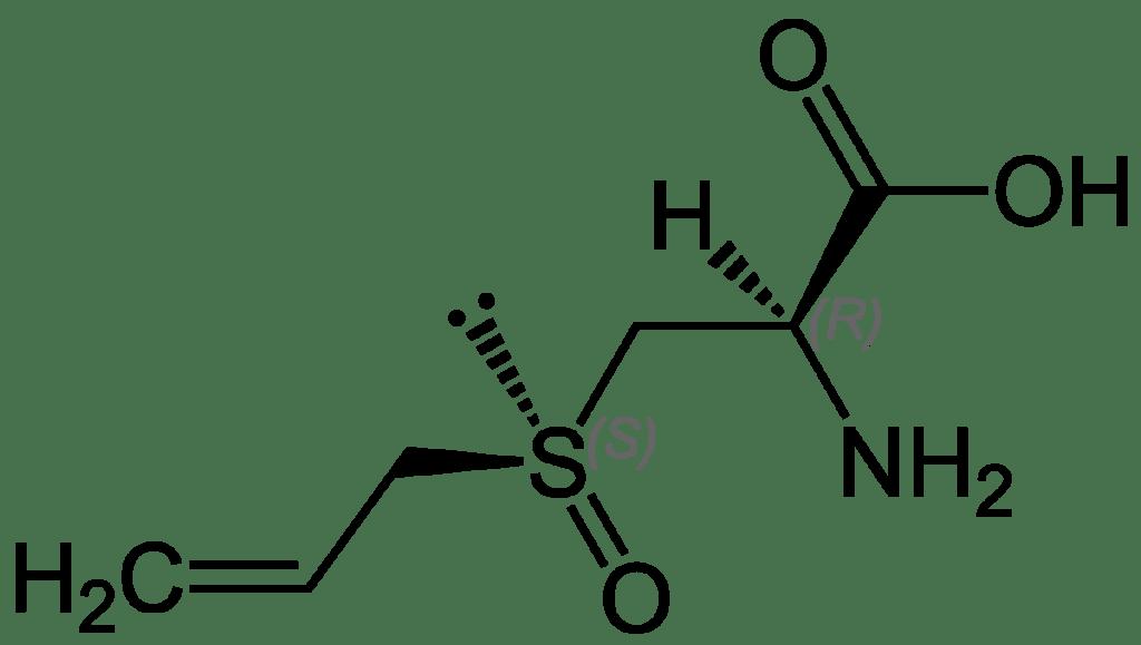 Alliin Structural Formula chemistry 1